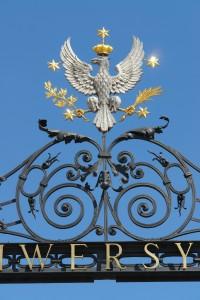 fot. Hubert Kowalski_Archiwum Biura Promocji Uniwersytetu Warszawskiego (2)